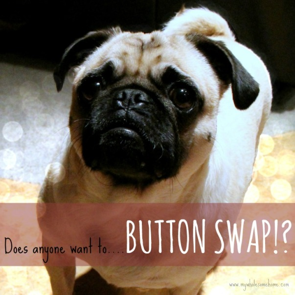 "alt=""Why you should advertise on my blog"", alt=""blog button swap"", alt=""button swap"""