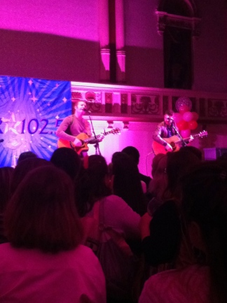 Roswell Park Pink Party, five for fighting, star 102.5 pink party,
